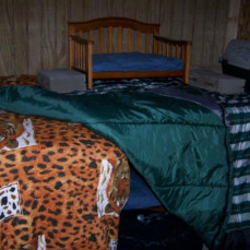 Inside one of the sheds, 2 large dog cages covered with sleeping bags & lined with cardboard boxes, beds and lots of blankets inside - Dorothy Parker