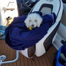 Captain Rossi, I will so miss you this summer on our boat. I know how much you loved it. - Betty Dueber