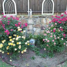 - Distinctive Life Cremations Funerals