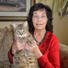 More photos of our Kittywhompus... - Troy M Holan