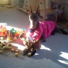 Loving her toys - Lon Augdahl