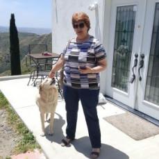 Sue in San Diego May, 2020 visiting with her Bestie (Calva). - Calva