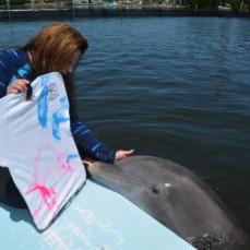Karen with her beloved dolphins - Carolyn Oakley